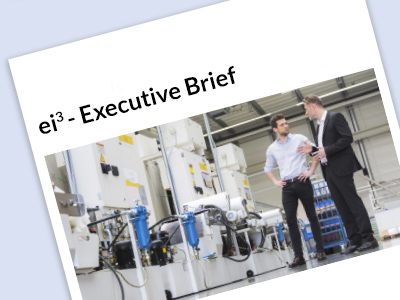 ei3 Executive Brief